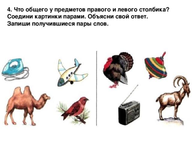 4. Что  общего  у  предметов  правого  и  левого  столбика ? Соедини  картинки  парами . Объясни  свой  ответ . Запиши  получившиеся  пары  слов .