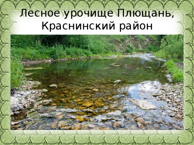 Лесное урочище Плющань, Краснинский район