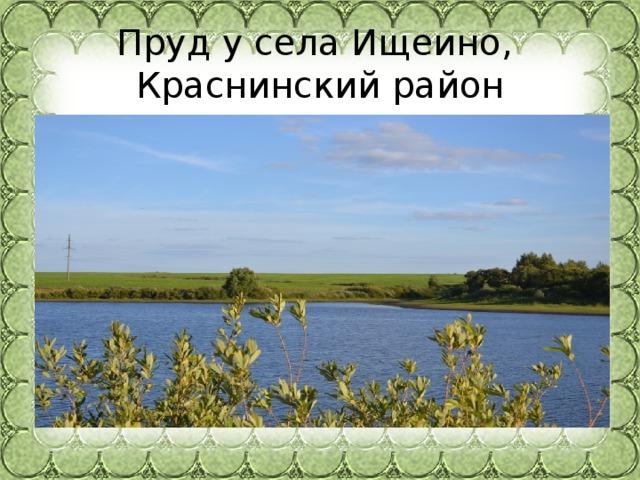 Пруд у села Ищеино,  Краснинскийрайон