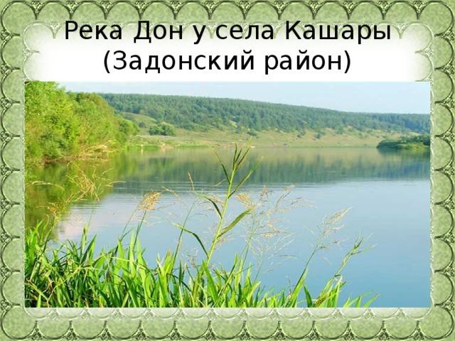 Река Дон у села Кашары  (Задонский район)