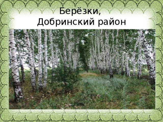 Берёзки,  Добринский район