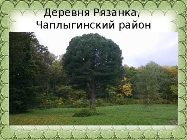 Деревня Рязанка,  Чаплыгинский район