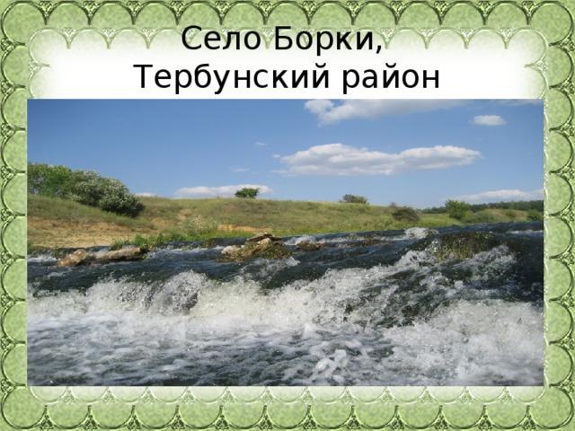 Село Борки,  Тербунский район