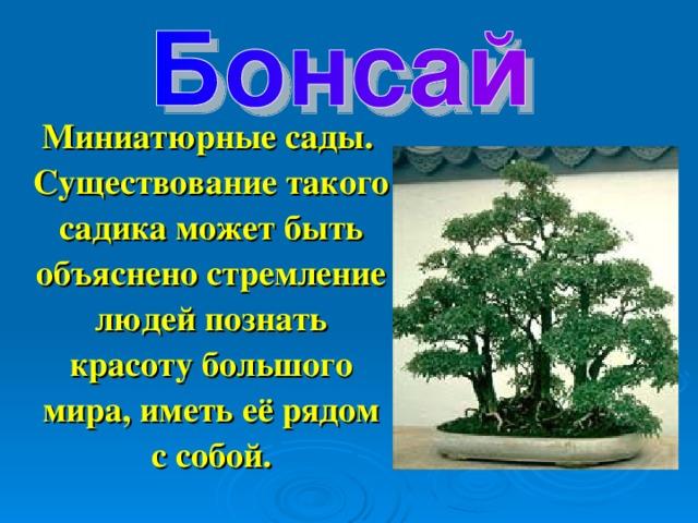 Миниатюрные сады. Существование такого садика может быть объяснено стремление людей познать красоту большого мира, иметь её рядом с собой.