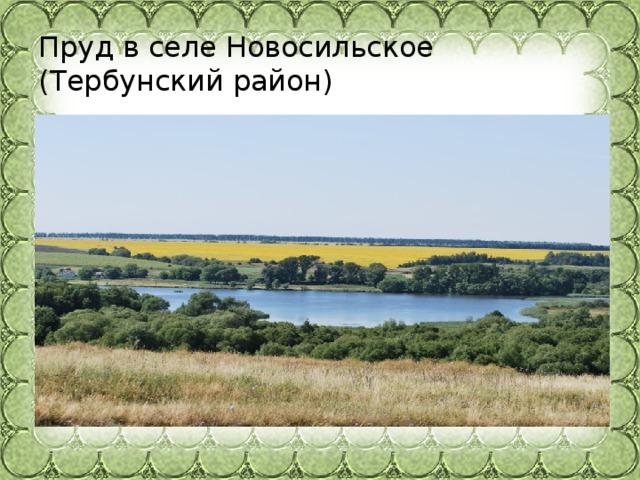 Пруд в селе Новосильское (Тербунский район)