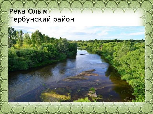 Река Олым,  Тербунский район