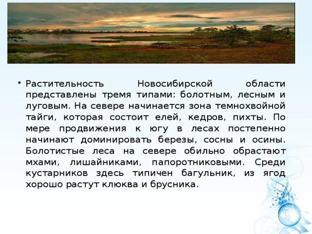 Растительность Новосибирской области представлены тремя типами: болотным, лесным и луговым. На севере начинается зона темнохвойной тайги, которая состоит елей, кедров, пихты. По мере продвижения к югу в лесах постепенно начинают доминировать березы, сосны и осины. Болотистые леса на севере обильно обрастают мхами, лишайниками, папоротниковыми. Среди кустарников здесь типичен багульник, из ягод хорошо растут клюква и брусника.