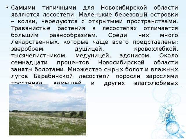 Самыми типичными для Новосибирской области являются лесостепи. Маленькие березовый островки – колки, чередуются с открытыми пространствами. Травянистые растения в лесостепях отличается большим разнообразием. Среди них много лекарственных, которые чаще всего представлены: зверобоем, душицей, кровохлебкой, тысячелистником, медуницей, адонисом. Около семнадцати процентов Новосибирской области заняты болотами. Множество сырых болот и влажных лугов Барабинской лесостепи поросли зарослями тростника, камышей и других влаголюбивых растений.