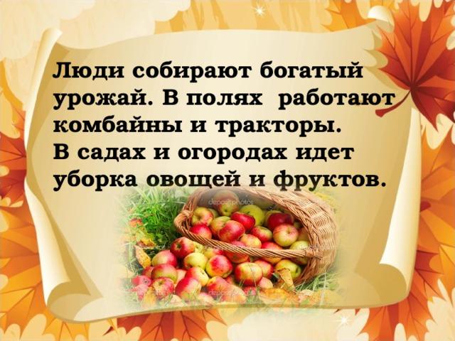 Люди собирают богатый урожай. В полях работают комбайны и тракторы.  В садах и огородах идет уборка овощей и фруктов.