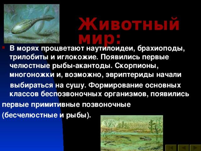 Животный мир : В морях процветают наутилоидеи, брахиоподы, трилобиты и иглокожие. Появились первые челюстные рыбы-акантоды. Скорпионы, многоножки и, возможно, эвриптериды начали  выбираться на сушу. Формирование основных классов беспозвоночных организмов, появились первые примитивные позвоночные (бесчелюстные и рыбы).