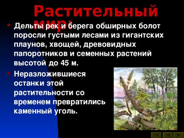 Растительный мир :