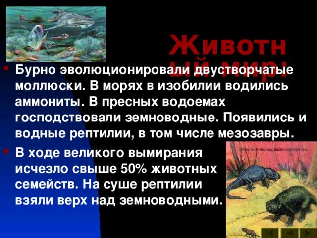 Животный мир :