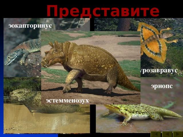 Представители : эокапторинус иностранцевия лантанозух двинозавр диметродон целурозавравус ивантозавр скутозавр двиния каккопс эриопс эстемменозух мезенозавр