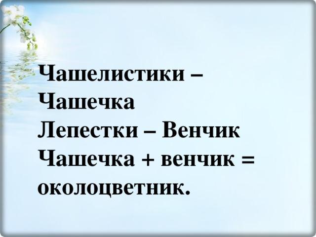 Чашелистики –Чашечка  Лепестки – Венчик  Чашечка + венчик = околоцветник.