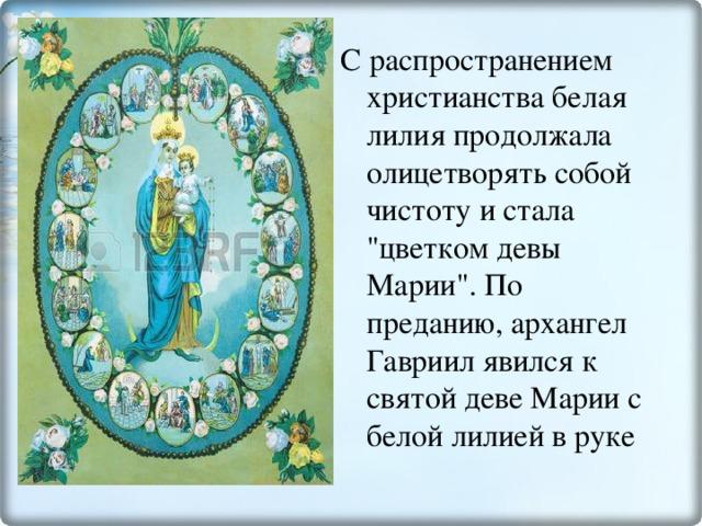 С распространением христианства белая лилия продолжала олицетворять собой чистоту и стала