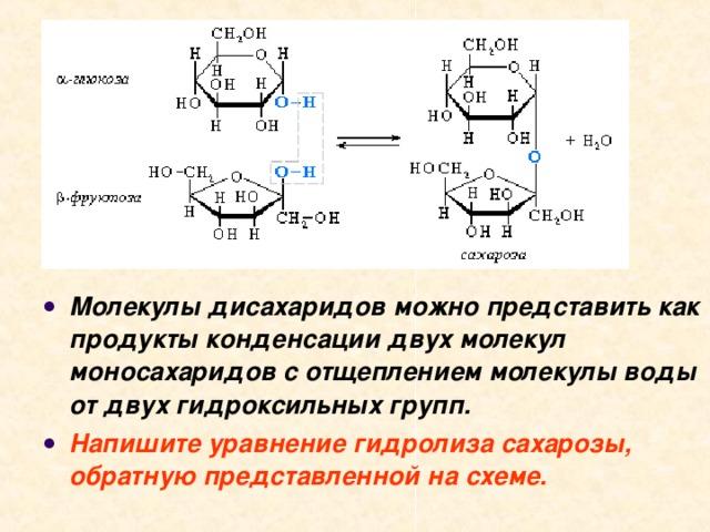 Молекулы дисахаридов можно представить как продукты конденсации двух молекул моносахаридов с отщеплением молекулы воды от двух гидроксильных групп. Напишите уравнение гидролиза сахарозы, обратную представленной на схеме.