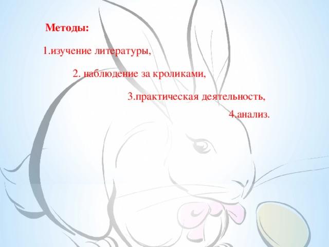 Методы:  изучение литературы,  2. наблюдение за кроликами,    3.практическая деятельность,  4.анализ.