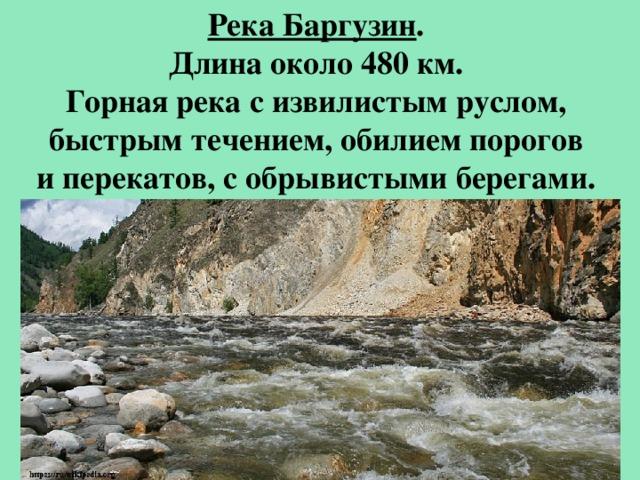 Река Баргузин . Длина около 480 км. Горная река с извилистым руслом, быстрым течением, обилием порогов и перекатов, с обрывистыми берегами.