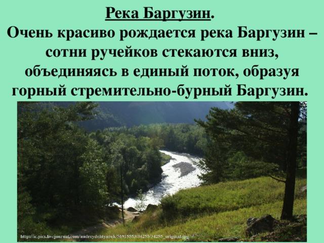 Река Баргузин . Очень красиво рождается река Баргузин – сотни ручейков стекаются вниз, объединяясь в единый поток, образуя горный стремительно-бурный Баргузин.