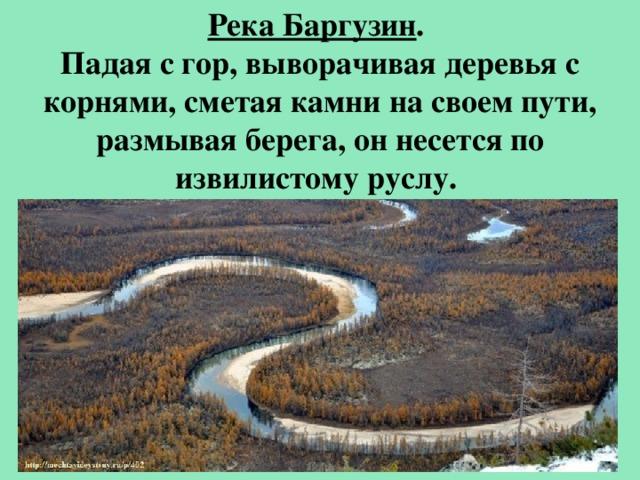 Река Баргузин . Падая с гор, выворачивая деревья с корнями, сметая камни на своем пути, размывая берега, он несется по извилистому руслу.
