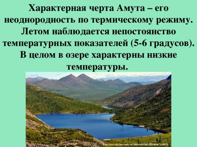 Характерная черта Амута – его неоднородность по термическому режиму. Летом наблюдается непостоянство температурных показателей (5-6 градусов). В целом в озере характерны низкие температуры.