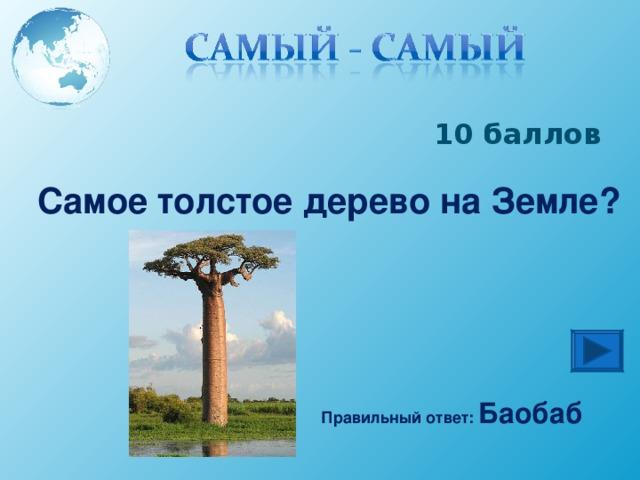 10 баллов Самое толстое дерево на Земле? Правильный ответ: Баобаб