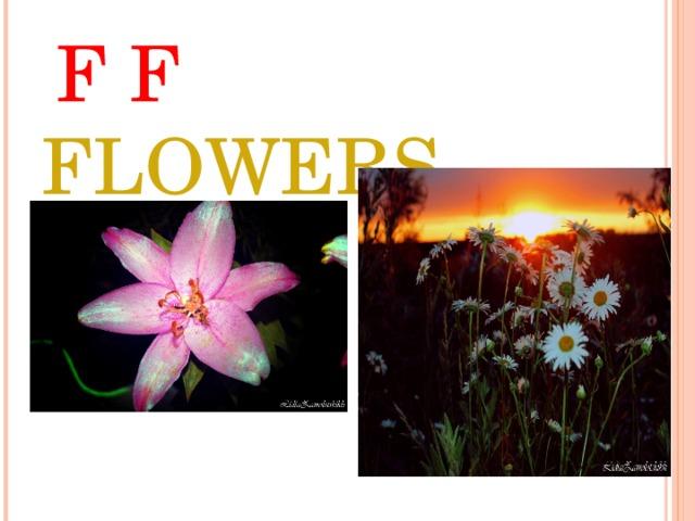 F F FLOWERS