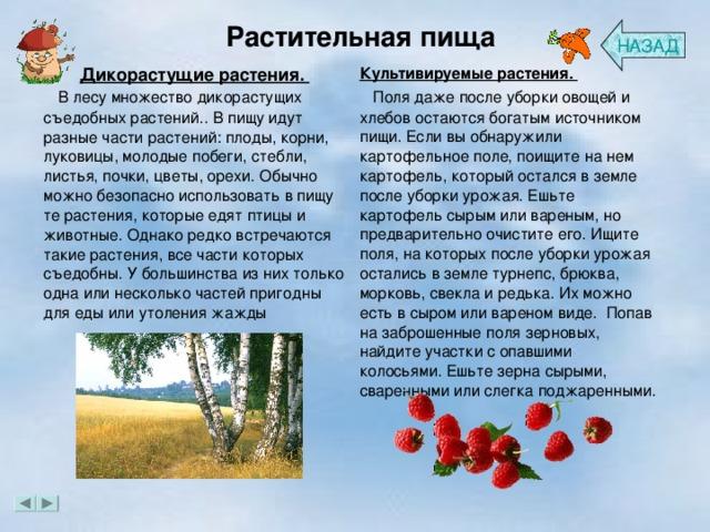 Растительная пища НАЗАД Дикорастущие растения.  В лесу множество дикорастущих съедобных растений.. В пищу идут разные части растений: плоды, корни, луковицы, молодые побеги, стебли, листья, почки, цветы, орехи. Обычно можно безопасно использовать в пищу те растения, которые едят птицы и животные. Однако редко встречаются такие растения, все части которых съедобны. У большинства из них только одна или несколько частей пригодны для еды или утоления жажды Культивируемые растения.  Поля даже после уборки овощей и хлебов остаются богатым источником пищи.Если вы обнаружили картофельное поле, поищите на нем картофель, который остался в земле после уборки урожая. Ешьте картофель сырым или вареным, но предварительно очистите его. Ищите поля, на которых после уборки урожая остались в земле турнепс, брюква, морковь, свекла и редька. Их можно есть в сыром или вареном виде. Попав на заброшенные поля зерновых, найдите участки с опавшими колосьями. Ешьте зерна сырыми, сваренными или слегка поджаренными.