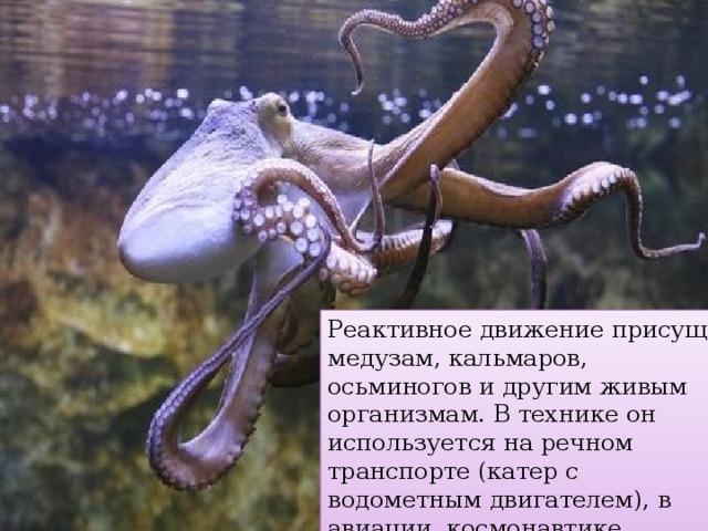 Реактивное движение присущ медузам, кальмаров, осьминогов и другим живым организмам. В технике он используется на речном транспорте (катер с водометным двигателем), в авиации, космонавтике, военном деле.