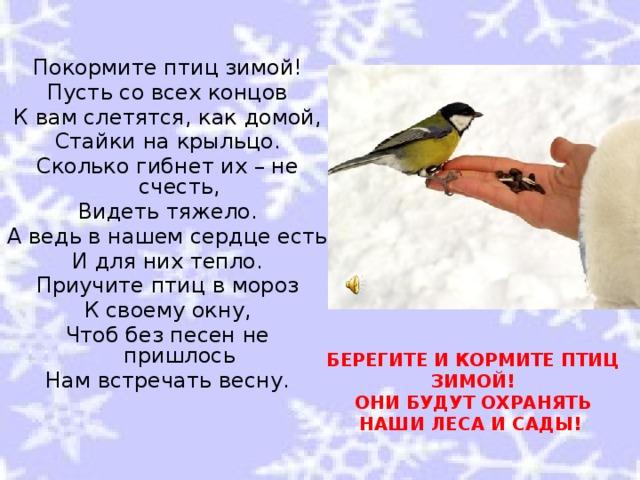 Покормите птиц зимой! Пусть со всех концов К вам слетятся, как домой, Стайки на крыльцо. Сколько гибнет их – не счесть, Видеть тяжело. А ведь в нашем сердце есть И для них тепло. Приучите птиц в мороз К своему окну, Чтоб без песен не пришлось Нам встречать весну. БЕРЕГИТЕ И КОРМИТЕ ПТИЦ ЗИМОЙ!  ОНИ БУДУТ ОХРАНЯТЬ НАШИ ЛЕСА И САДЫ!