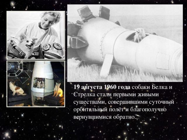 19 августа 1960 года собаки Белка и Стрелка стали первыми живыми существами, совершившими суточный орбитальный полёт и благополучно вернувшимися обратно..