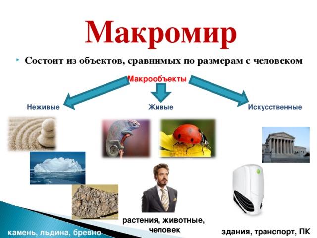 Макромир Состоит из объектов, сравнимых по размерам с человеком Макрообъекты     Неживые Живые Искусственные растения, животные,  человек здания, транспорт, ПК камень, льдина, бревно