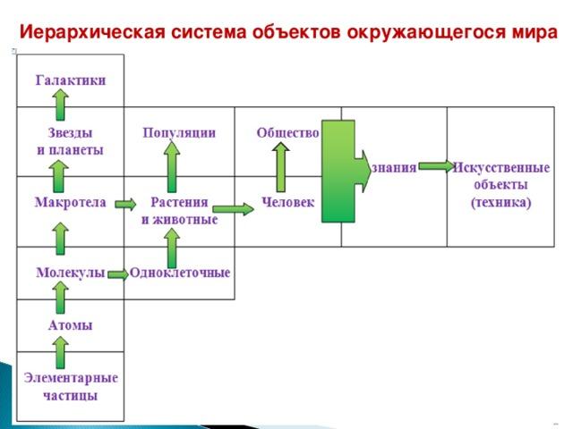 Иерархическая система объектов окружающегося мира