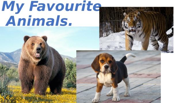 My Favourite  Animals.