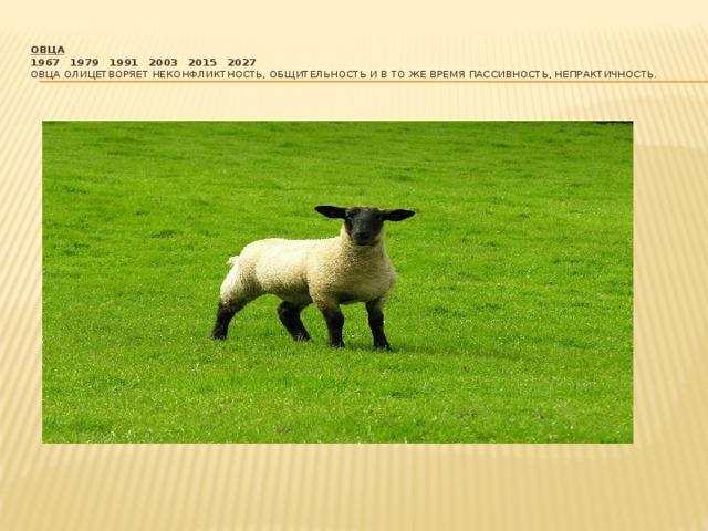 Овца  1967  1979  1991  2003  2015  2027  Овца олицетворяет неконфликтность, общительность и в то же время пассивность, непрактичность.