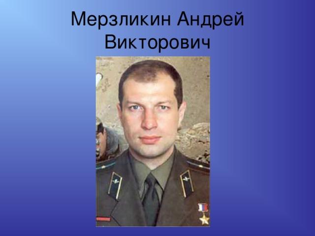 Мерзликин Андрей Викторович