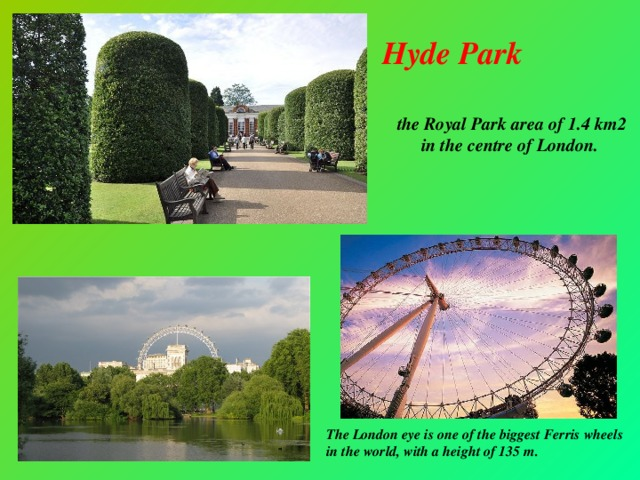 Hyde Park the Royal Park area of 1.4 km2 in the centre of London.  The London eye is one of the biggest Ferris wheels in the world, with a height of 135 m.