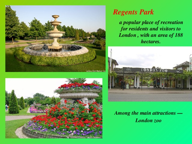 Regents Park  a popular place of recreation for residents and visitors to London , with an area of 188 hectares. Перевести в Google Bing     Among the main attractions — London zoo
