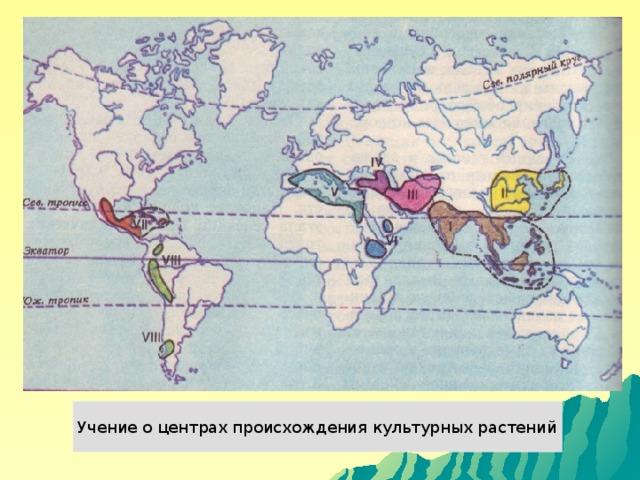 Учение о центрах происхождения культурных растений