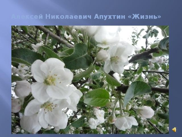 Алексей Николаевич Апухтин «Жизнь»