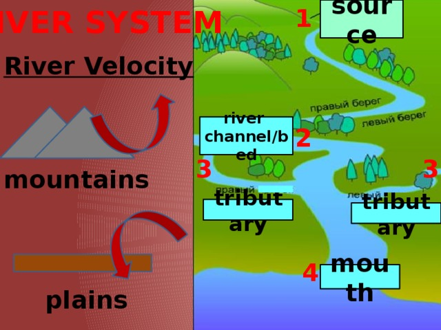 RIVER SYSTEM source 1 River Velocity river  channel/bed 2 3 3 mountains tributary tributary 4 mouth plains