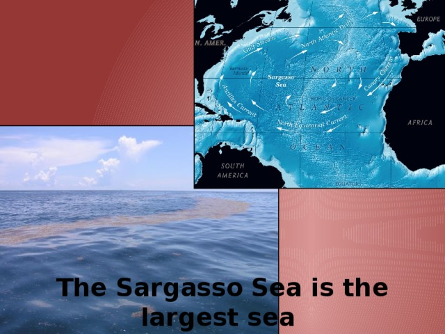 The Sargasso   Sea is the largest sea  in the world.