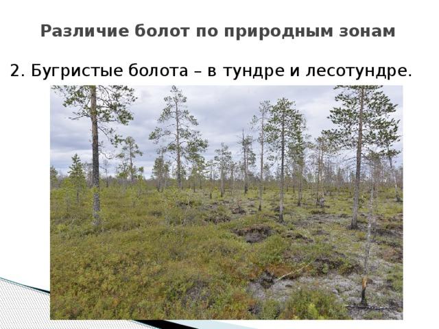 Различие болот по природным зонам 2. Бугристые болота – в тундре и лесотундре.