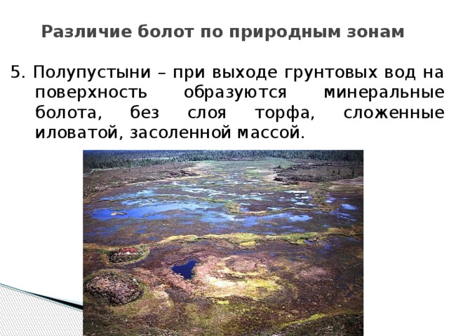 Различие болот по природным зонам 5. Полупустыни – при выходе грунтовых вод на поверхность образуются минеральные болота, без слоя торфа, сложенные иловатой, засоленной массой.