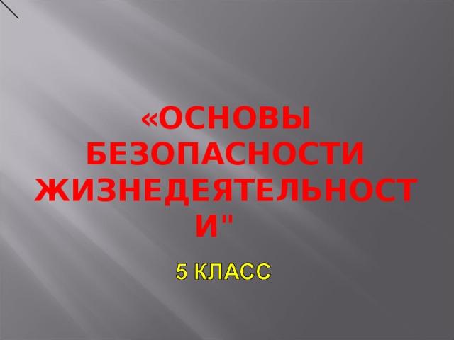 «ОСНОВЫ БЕЗОПАСНОСТИ ЖИЗНЕДЕЯТЕЛЬНОСТИ