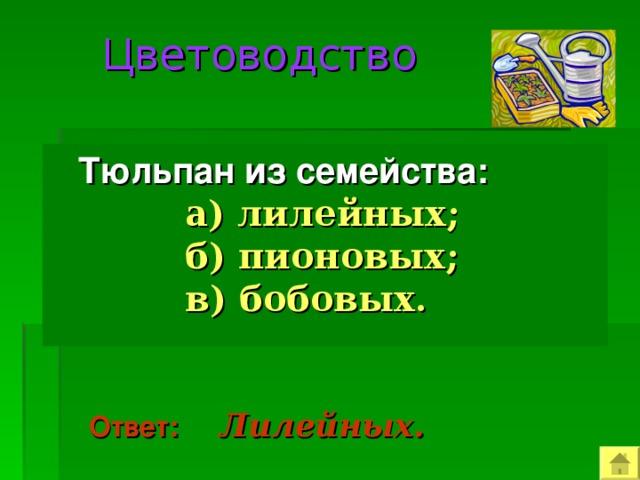 Цветоводство   Тюльпан из семейства:  а)  лилейных;  б) пионовых;  в) бобовых.  Ответ:  Лилейных.