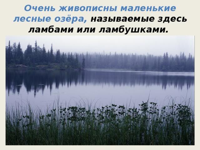 Очень живописны маленькие лесные озёра, называемые здесь ламбами или ламбушками.