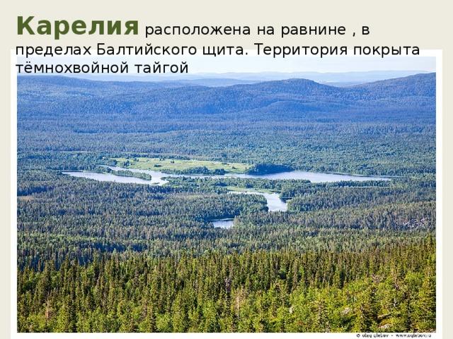 Карелия расположена на равнине , в пределах Балтийского щита. Территория покрыта тёмнохвойной тайгой