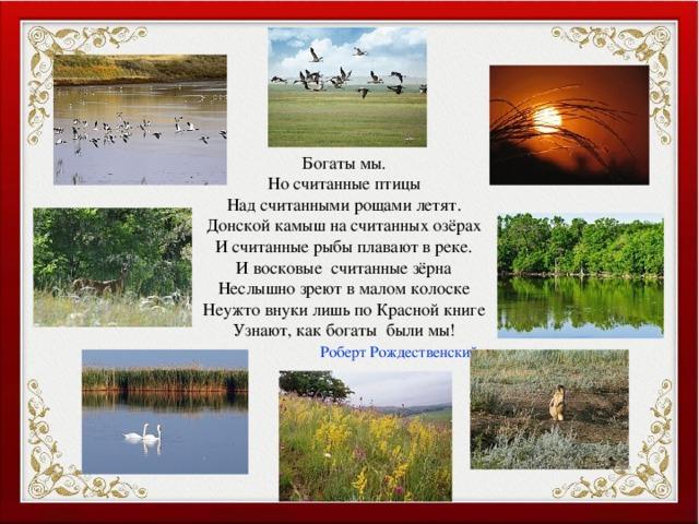 Богаты мы. Но считанные птицы Над считанными рощами летят. Донской камыш на считанных озёрах И считанные рыбы плавают в реке. И восковые считанные зёрна Неслышно зреют в малом колоске Неужто внуки лишь по Красной книге Узнают, как богаты были мы!  Роберт Рождественский