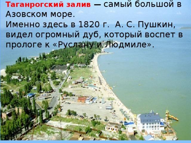 Таганрогский залив — самый большой в Азовском море. Именно здесь в 1820 г. А. С. Пушкин, видел огромный дуб, который воспет в прологе к «Руслану и Людмиле».